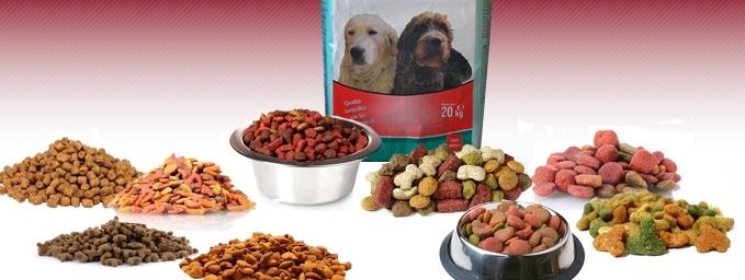 alimentation canine